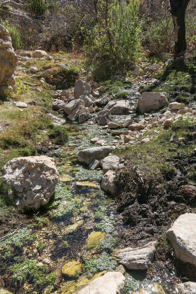 Hiking Sitting Bull Falls And Spring In Lincoln National