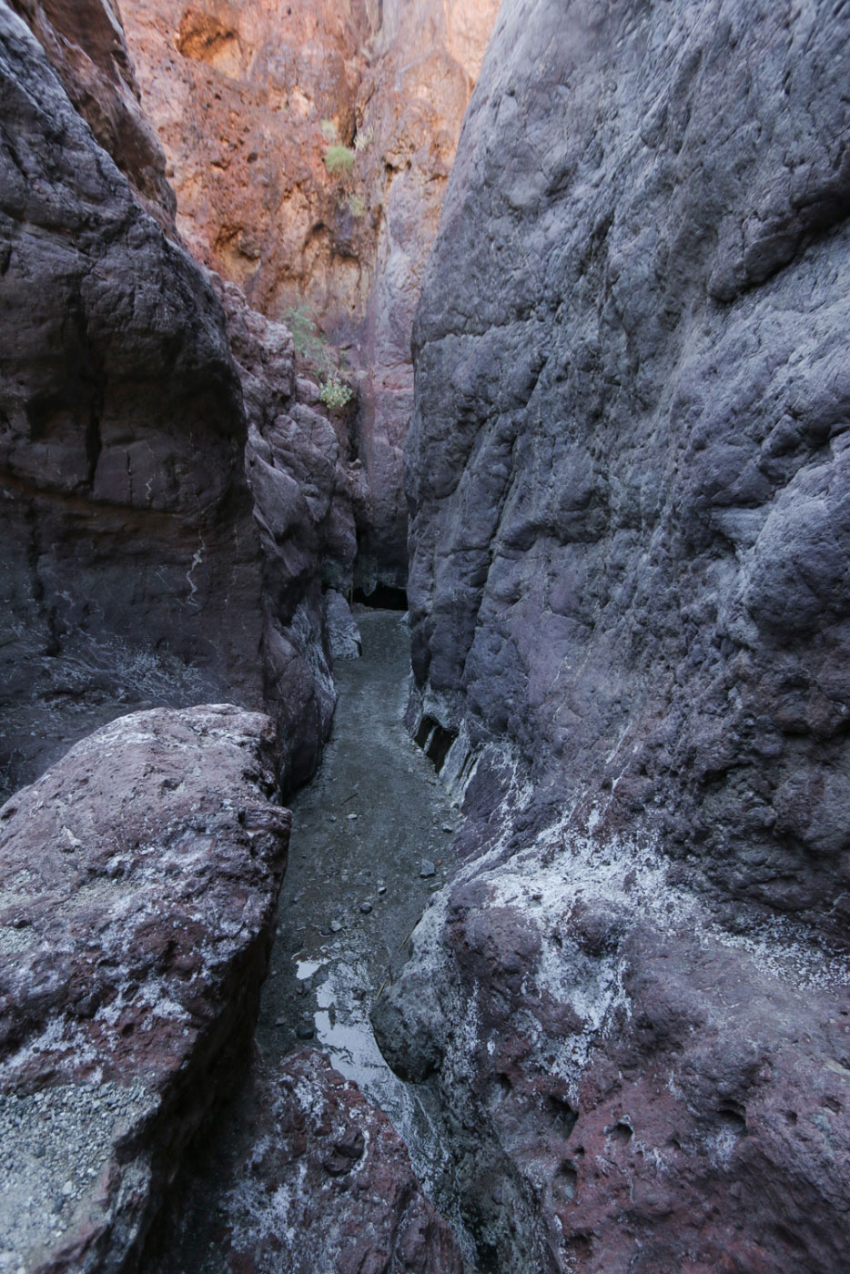 Hiking Arizona Hot Springs And White Rock Canyon Loop In
